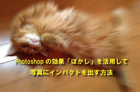 Photoshopの効果「ぼかし」を活用して写真にインパクトを出す方法